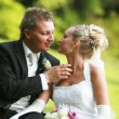 Stock Photo: Couple - bride and bridegroom