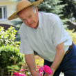 Active senior in the garden — Stock Photo