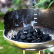 Charcoal grill on the barbecue — Stock Photo