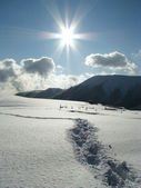 Güzel bir kış günü. — Stok fotoğraf