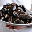 Cooked and opened organic mussel — Stock Photo