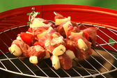 Home made shashlik on a grill — Stock Photo
