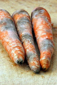 Mouldy vegetable unhealthy to eat — Stock Photo