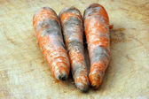 Mouldy organic vegetable — Stock Photo