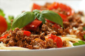 Spaghetti with minced meat sauce — Stock Photo