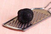 One organic summer truffle on a grater — Stockfoto