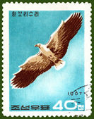 Vintage postage stamp. Eagle in flight — Stock Photo