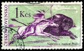 Postage stamp. Life injun. Hunters. — Stock Photo
