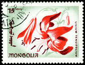 Postage stamp. The Flowerses lilium tenuifolium. — Stock Photo