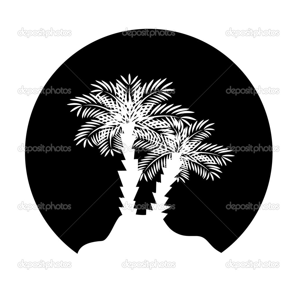 Palm tree for your design. Vector illustration — Stock Vector #3573543