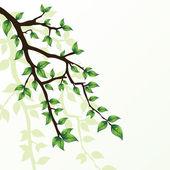 Tak van de boom — Stockvector