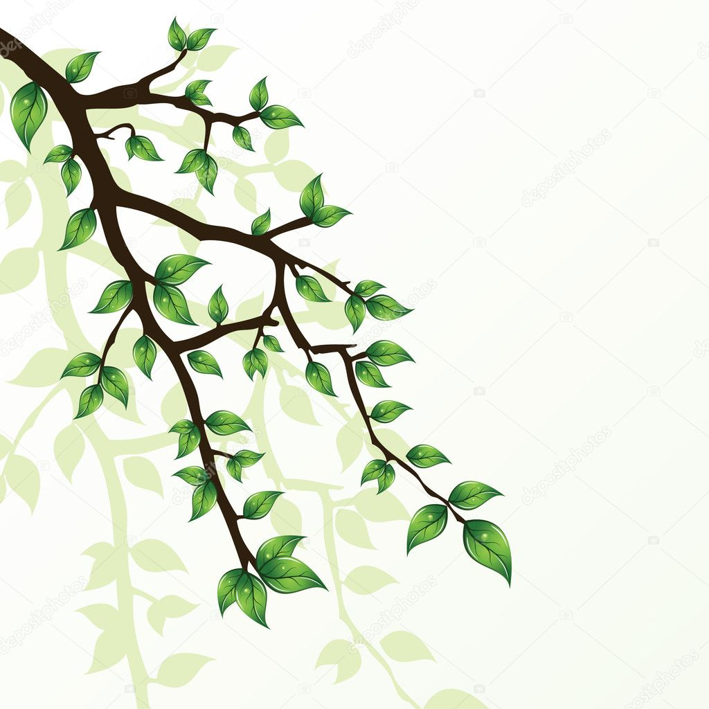 Branch of tree — Stock Vector #2944869
