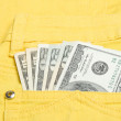 Money in the pocket — Foto Stock