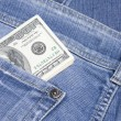 Money in the pocket — Stock Photo #2710572