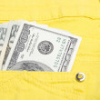 Money in the pocket — Stock Photo #2729837