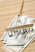 Raking In The Money — Stock Photo