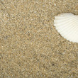 Sea sand — Stock Photo