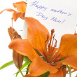 Happy mother's Day Mom — Stok Fotoğraf #3399099
