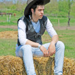 Stock Photo: Young man on hay bale