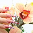Manicured acrylic nails — Stock Photo #2694923