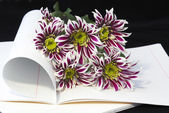 Opened notebook and flowers. — Stock Photo
