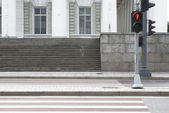 Zebra crossing with a traffic-light — Stock Photo