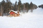 Huis in het bos — Stockfoto