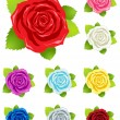 Royalty-Free Stock Векторное изображение: Colorful roses collection