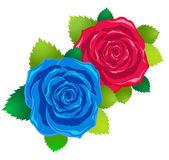 Dos rosas — Vector de stock