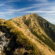 Autumn in Mala Fatra mountains - Foto Stock