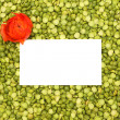 Bright green background of peas — Stock Photo