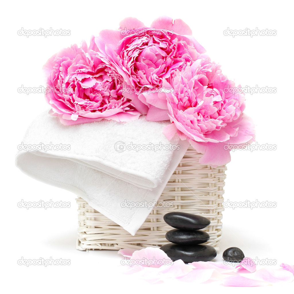 Spa relaxation concept with flower, towel and stones isolated on white — Stock Photo #3724179