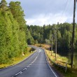 Stock Photo: Landscape with road