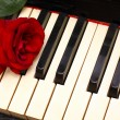 Romantic concept - deep red rose on piano keys — Stok fotoğraf