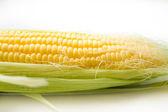The corn on white — Stock Photo