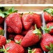 Fresh strawberries - 图库照片