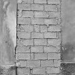 Bricked up door — Stock Photo