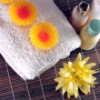 Spa Essentials - Foto de Stock