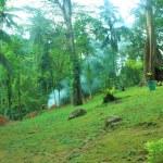 A mountain park in Camiguin Island — Stock Photo