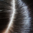 Glossy hair - Stock Photo