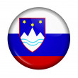 Icon with flag of Slovenia isolated - Stock Photo