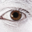 Beautiful brown eyes male closeup — Foto de stock #3481786