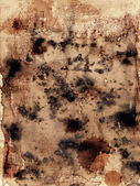 Structure of an old paper with mould stains — Stock Photo