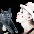 Mime in white hat holding gray cat British - Foto de Stock