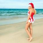 Sexy Santa — Stock Photo #3661245