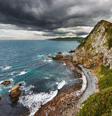 Coastal view, New Zealand — Stock Photo