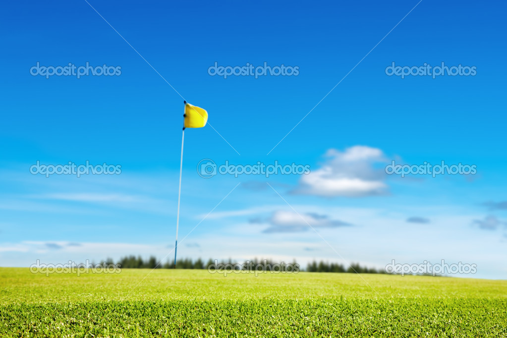 Golf field, focus on the grass, shallow depth of field — Stock Photo #3266517