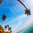 Tropical beach, Thailand — Stock Photo #3289729