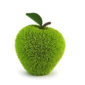 Green fur apple — Stock Photo