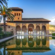 Alhambra patio with pool, Granada, Spain — Stock Photo #3596753